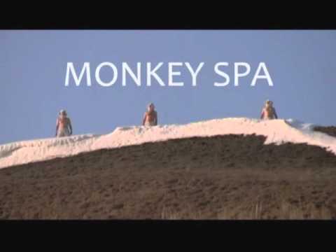 Multiflex / Monkey Spa – Teaser 2010
